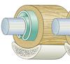 Sehne Mesotendineum Stratum-Synoviale